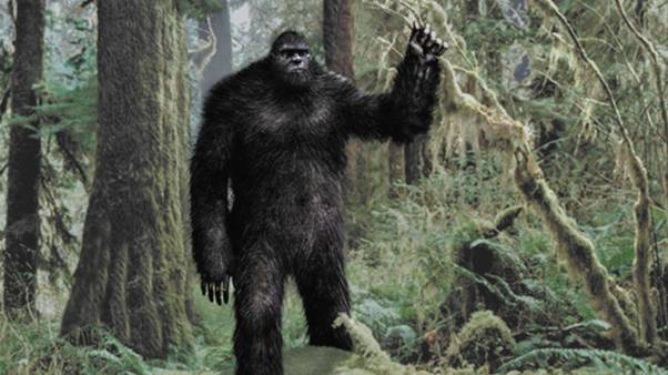 275052-cryptozoology-bigfoot-wallpaper